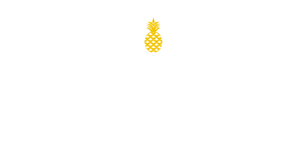 Image of Pacific Dynamics Logo
